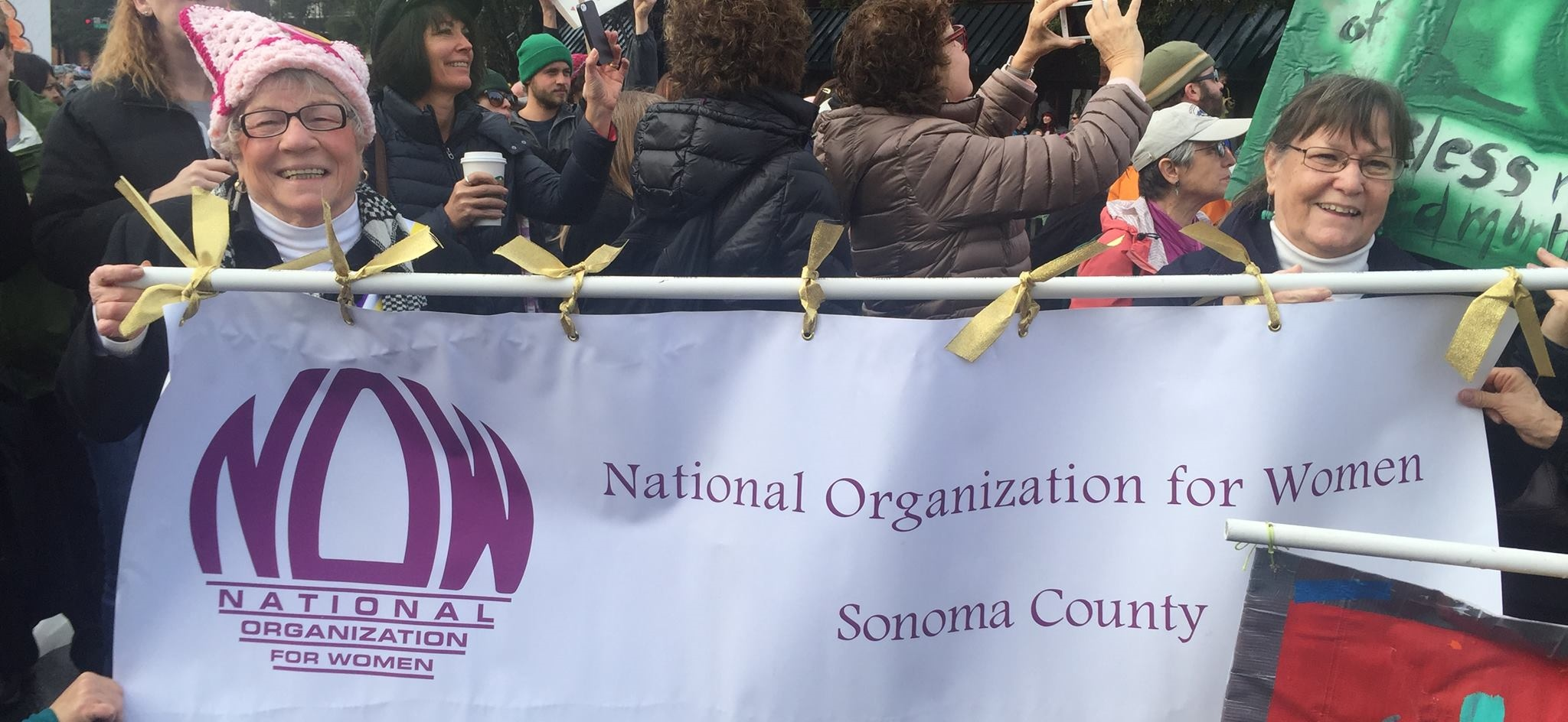 NOW Sonoma Chapter on the Womens' March January 29, 2018